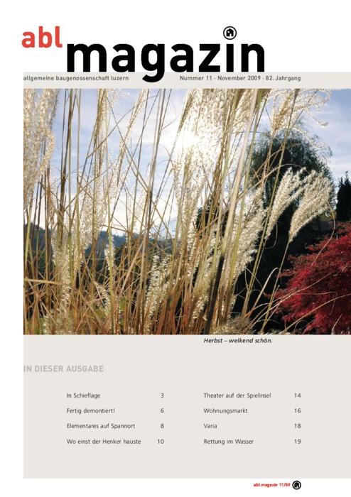 magazin November 2009